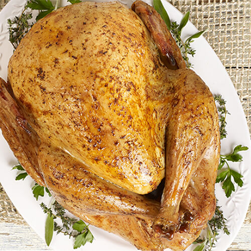 Holiday roasted turkey garnished with fresh herbs on a white plate.