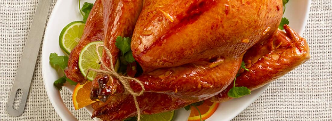image-banner_jennie-o_recipe-category_ingredient--whole-turkey--1100x400